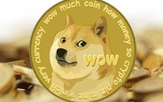 Создаем кошелек Dogecoin: важные моменты